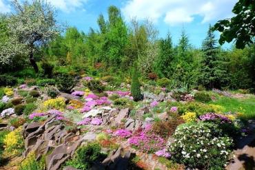 Дендропарк в селе возле Ужгорода производит впечатление и удивляет редкостными растениями