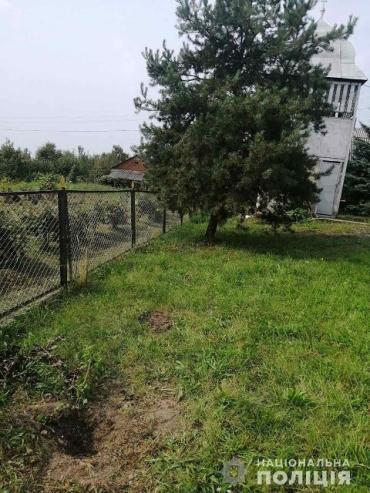 В Закарпатье воры-рецидивисты похитили туи со двора церкви (ФОТО)