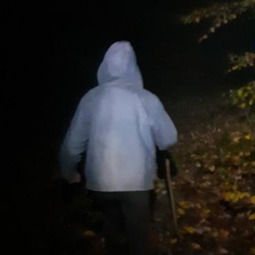 На Закарпатті відшукали жінку, що пішла в ліс по гриби і зникла