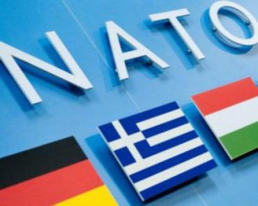 """Скандал с """"венгерскими"""" обысками в Закарпатье добрался уже до штаб-квартиры НАТО!"""