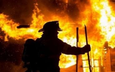 У вогні на Закарпатті загинула майже сотня свійських тварин