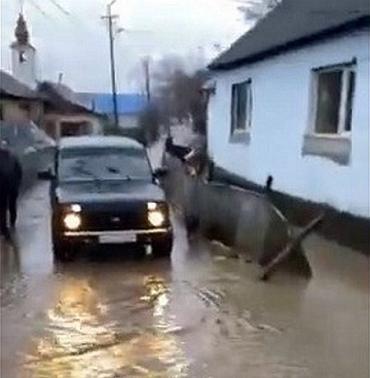 Роми Закарпаття в шоці — їхній табір затопило! (ВІДЕО)