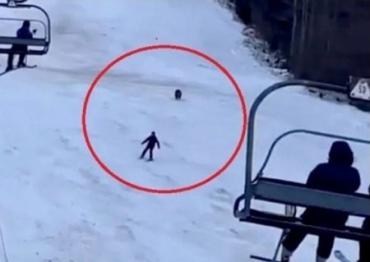 Голодний ведмідь влаштував погоню за лижником у Карпатах