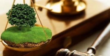 Госгеокадастр Закарпатья незаконно лишил аграриев права постоянного пользования землей на несколько сот миллионов гривен!