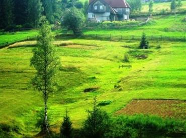 В Закарпатье женщина заплатит более 5000 гривен за самовольный захват земли