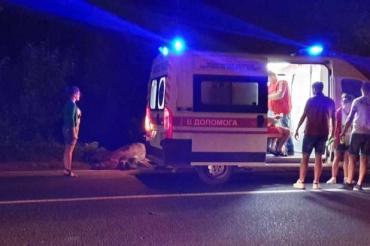 В Закарпатье лошадь неожиданно выбежала на трассу и устроила аварию