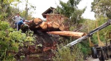 Жителі сіл Закарпаття самі зводять переправи через бурхливі гірські річки — замість будівельників-професіоналів