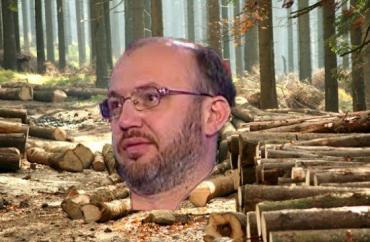 Лесной мафиози Еднак - претендент на кресло первого замглавы Гослесагентства