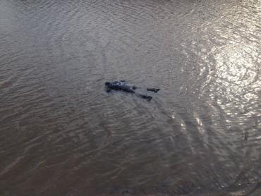 В Закарпатье из дна озера извлекли мертвое тело человека