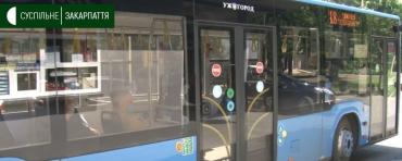В Ужгороде пенсионеры теперь ездят на маршрутках бесплатно, а водители не имеют права требовать деньги!