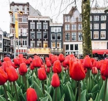 Нидерланды отправляют украинцев на карантин