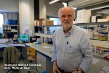 Антитело к COVID-19 найдено учеными из медицинского центра в Нидерландах
