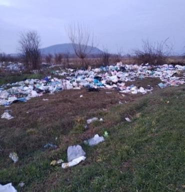 Тут мои сотки, а не мусорник: Житель Закарпатья возмущен свинством людей