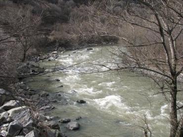 В Закарпатье по реке Тиса движется шлейф тяжелых металлов