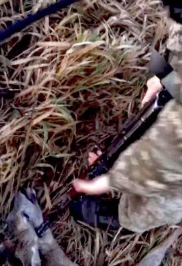 Ану лежать, с ***, стрелять буду!: На Волыни пограничники сняли, как издеваются над косулей