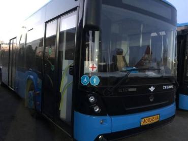 В областном центре Закарпатья не будет ездить общественный транспорт