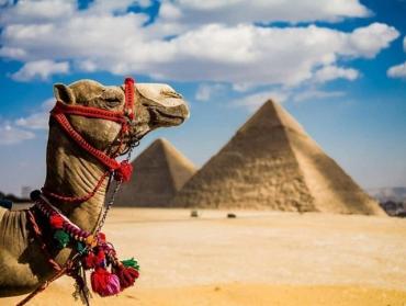 Туристам на заметку: Египет будет требовать негативные ПЦР-тесты для въезда