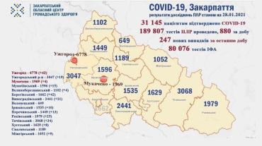 В Закарпатье по новым случаям коронавируса лидируют Ужгород и Береговский район: Данные на 28 января