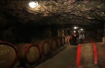 Винный подвал с плесенью на Закарпатье