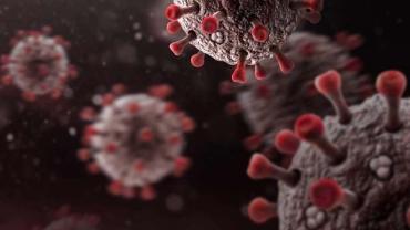 В Закарпатье удалось придушить коронавирус: Последний апдейт