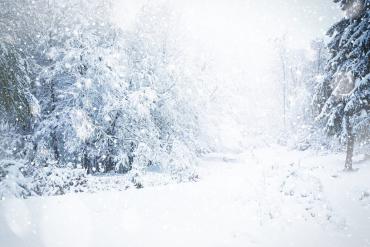 Невероятно, но факт: На вершине горы в Закарпатье бушует неистовая зима