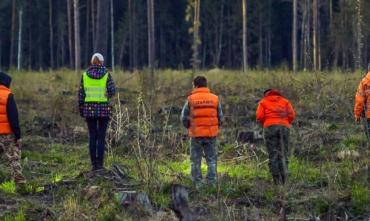 В Закарпатье пол ночи рыскали лес в поисках местного жителя