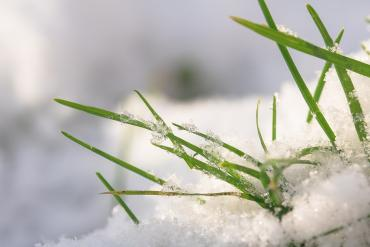 С 22 февраля Закарпатье будет находиться в зоне действия теплого атлантического воздуха