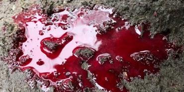 Кровавый случай в Закарпатье: Работника завода нашли всего в крови только спустя некоторое время