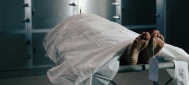 Возле Ужгорода в поле обнаружили скелет женщины