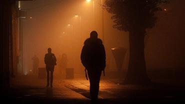 В Ужгороде женщина стала жертвой неконтролируемого рома