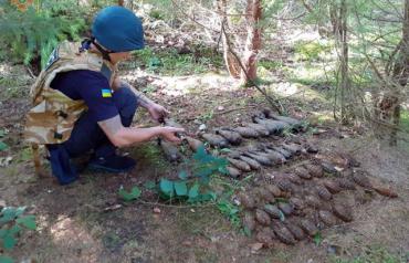 В Закарпатье весь лес просканировали металлоискателем: Количество найденного просто шокирует