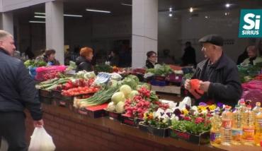На Закарпатье журналисты проверили содержание нитратов в ранней редиске