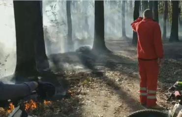 Опубликовано видео где пожарные тушат траву возле трупа человека в Закарпатье