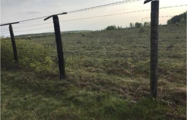 Венгры задержали водителя из Закарпатья, не понятно как попавшего на территорию Украины