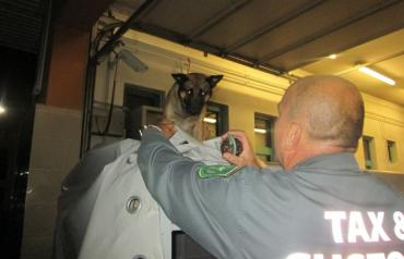 """В Закарпатье служебная собака """"вынюхала"""" то, чего не смогли найти таможенники"""