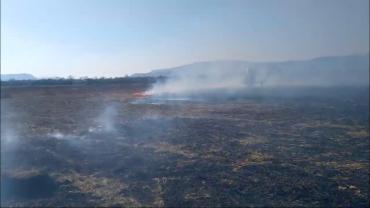 В Закарпатье неизвестные устроили пожар в долине нарциссов
