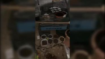 В Закарпатье полицейские обнаружили в подвале ранее судимого парня сомнительную комнату