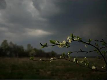 Ужгород в ближайшее время накроет проливной ливень с грозой