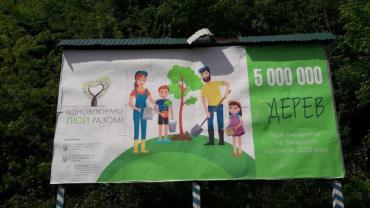 Катастрофічний стан і критична межа вирубки Закарпатського лісу