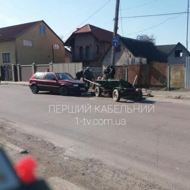 """""""Лобовое"""" столкновение с пострадавшим: В Мукачево произошел конфуз на дороге"""