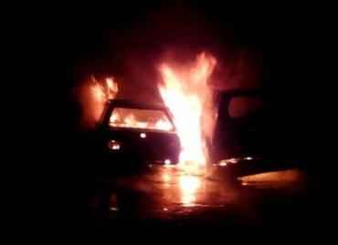 В Мукачево дикий огонь натворил беды почти на миллион