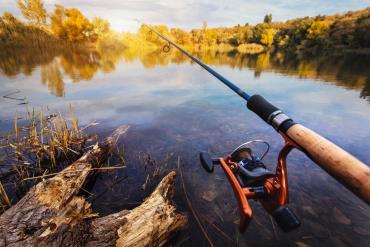 В Закарпатье большая рыба утащила рыбака на дно