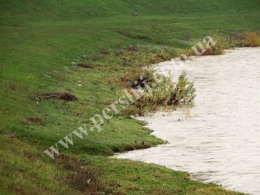 Сильные дожди в Мукачево оставили после себя не совсем приятные последствия