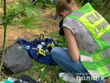 В Закарпатье обнаружили масштабную плантацию, находящуюся под круглосуточной вооруженной охранной