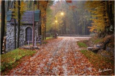 В Воеводино восстанавление парка Шенборна идет по проекту