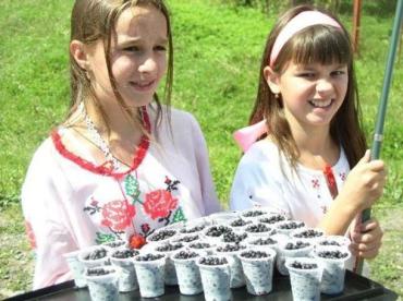 Жители Воловецкого района угощали дарами карпатских гор