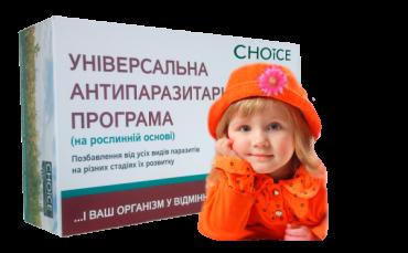 Для мэра Ужгорода подготовили программу действий по развитию города