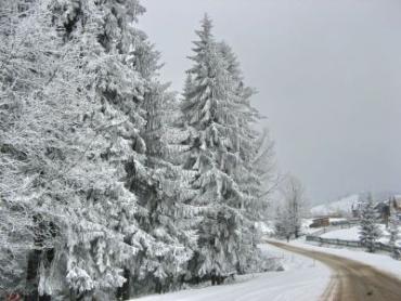 За можливості утримайтеся від поїздок через гірські перевали