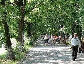 Сегодня в Ужгороде ожидается малооблачная сухая погода
