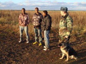 Пограничники Закарпатья задержали 8 нелегалов из Сомали и одного россиянина